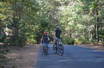 Country Campground Resort 10-10-14 007.JPG
