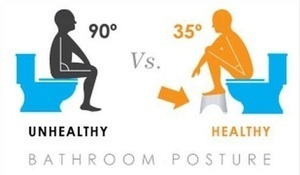 You've Been Sitting On The Toilet Wrong Your Whole Life. This Is How To Do It Right..jpg